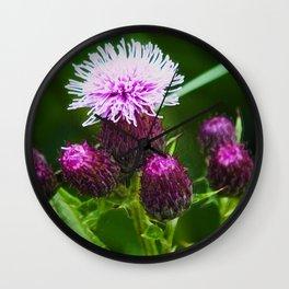 Cirsium Arvense (Creeping Thistle) Wall Clock