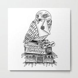 Hedwig On Books Metal Print