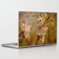 cherry blossoms Laptop & iPad Skins featuring Cherry Blossoms by Dorothy Pinder