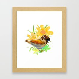 Daisy sparrow Framed Art Print