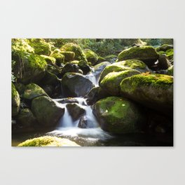 Finding Falls Canvas Print