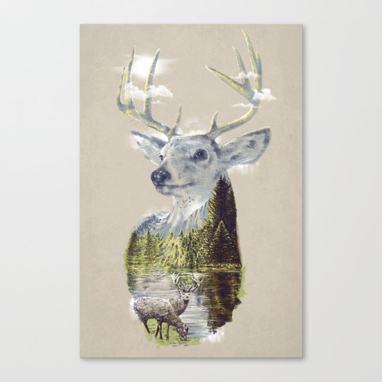 Mo'deer' Nature Canvas Print