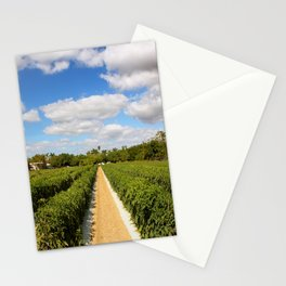 Tomato Fields  Stationery Cards