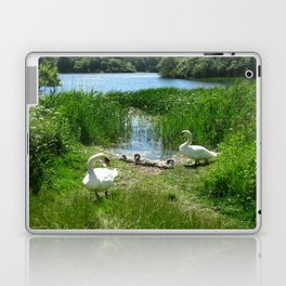 Bosherston Lily Ponds.Pembrokeshire.Wales. Laptop & iPad Skin