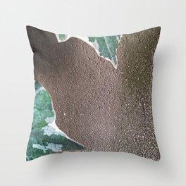 008 Throw Pillow