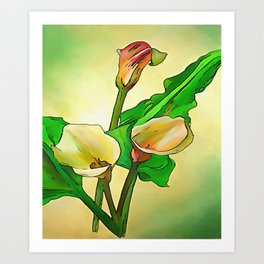 Outlined Calla Lilies Against A Green Ombre Background Art Print