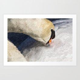 The Proud Swan Art Art Print