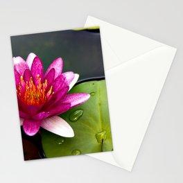 Pink Lily at Jeju Island Stationery Cards