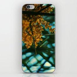 The Amazon. iPhone Skin