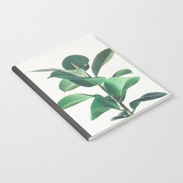 Rubber Fig Notebook