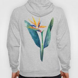 Watercolor strelitzia Hoody