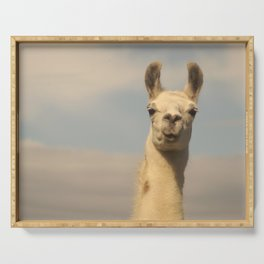 excited llama face Serving Tray