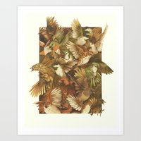 cardinal Art Prints featuring Red-Throated, Black-capped, Spotted, Barred by Teagan White