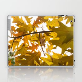 Golden oak leaves Laptop & iPad Skin