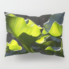 Green Contrast - Light and Dark Pillow Sham