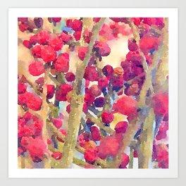 Pepper berries Art Print
