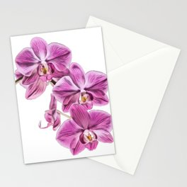 Orchid diverse widespread blooms colourful fragrant orchid family Stationery Cards
