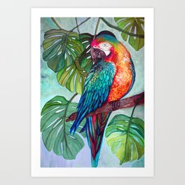 Hyacinth Parrot in the Jungle Art Print