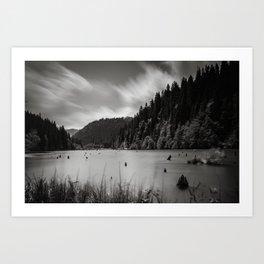 red lake Art Print