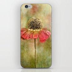 Singleton iPhone & iPod Skin