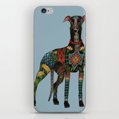 greyhound azure blue iPhone Skin