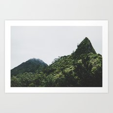 Pali Point Art Print
