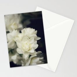 Gentle Jonquils Stationery Cards