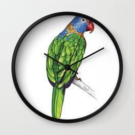 Rainbow Lorikeet Parrot Gift Vibrant Colorful Bird Lover Gift  Wall Clock