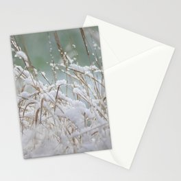 Snowflakes on dry grass Stationery Cards