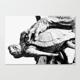 Hand Turtle Canvas Print
