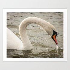 Dripping Swan Art Print