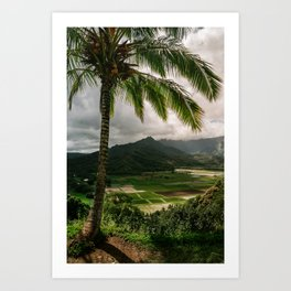 Hanalei Valley Lookout Kauai Hawaii | Tropical Island Nature Coastal Travel Photography Print Art Print