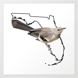 Florida – Northern Mockingbird Art Print