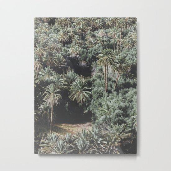 Palm Tree Jungle Metal Print