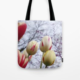 Tulips Ready For Lift Off Tote Bag