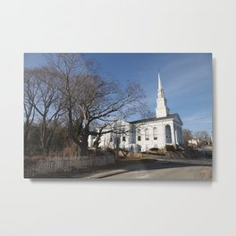 The House in white Metal Print