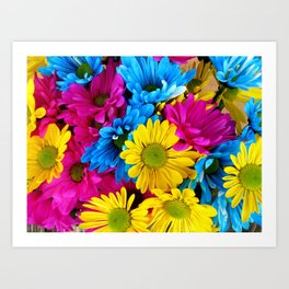 Daisy Flowers, Petals, Blossoms - Blue Yellow Pink Art Print