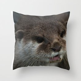 Otterly Sweet Face Throw Pillow