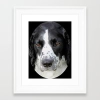 border collie Framed Art Prints featuring Border Collie by Doug McRae