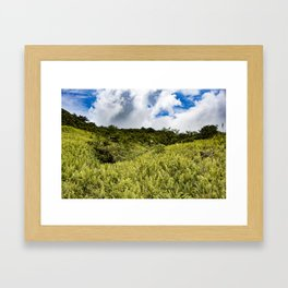 Beautiful Blue Sky Filled with Clouds of the Fern Covered Side of Mombacho Volcano, Nicaragua Framed Art Print