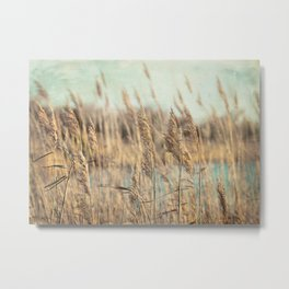 Marsh Grasses Metal Print