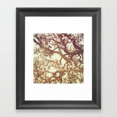 WOODEN WALLPAPER Framed Art Print