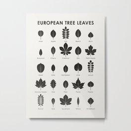 European Tree Leaves Metal Print