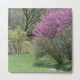 Riverside Spring Metal Print