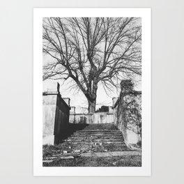 Tree at the Center Art Print