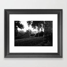 Balinese monkey ascending slope Framed Art Print