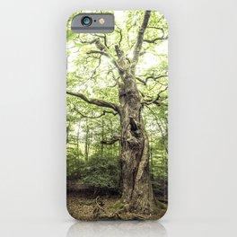 Ancient Tree, Mörfelden - Germany iPhone Case