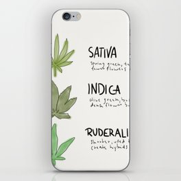 Types of Cannabis iPhone Skin
