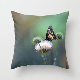 Butterfly Thistle Throw Pillow