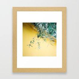 Olive tree Framed Art Print